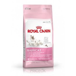 Фото Royal Canin Mother & Babycat 4 кг